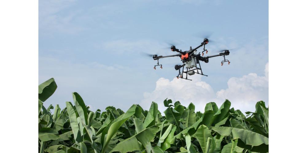 Drones pulverizadores são realidade no campo: DJI e Allcomp
